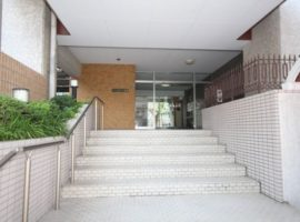 imageview (5)